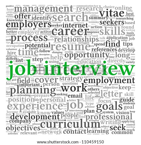 Job  interview concept in word tag cloud on white background - stock photo