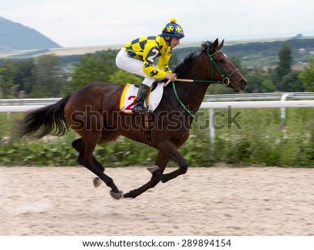 Jockey on horse.Hippodrome of Pyatigorsk (Northern Caucasus), season 2015. - stock photo