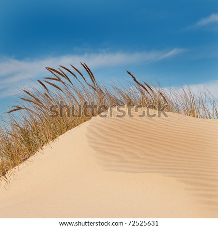 Jockey's Ridge Sand Dune in the Outer Banks, North Carolina.