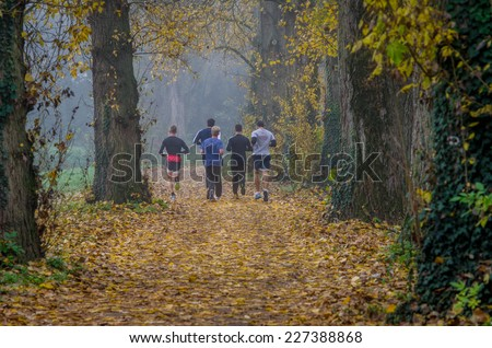 Joggers on a trail in the park on a foggy day - stock photo