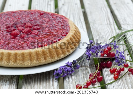 Johannisbeerkuchen - stock photo