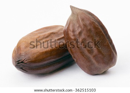 Jojoba seeds (Simmondsia chinensis) isolated on withe beckground