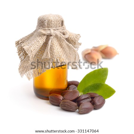 Jojoba (Simmondsia chinensis) leaves, seeds with oil. Isolated on withe beckground. - stock photo