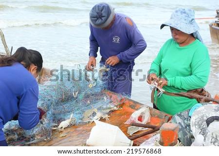 JOMTIEN-PATTAYA SEPTEMBER 22: Fishermen remove fish and crabs from fishing nets at  Jomtien beach Pattaya September:22, 2014. Fishing is a traditional craft in Pattaya Thailand - stock photo
