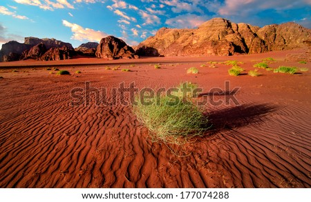 Jordan desert sunset - stock photo