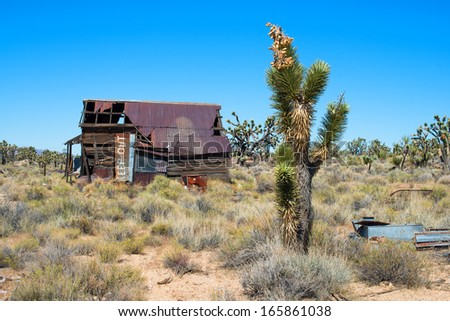 Joshua tree and abandoned house with Keep Out sign - stock photo