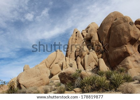 Joshua Tree National Park Horizontal Landscape