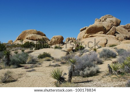 Joshua Tree National Park impression, California