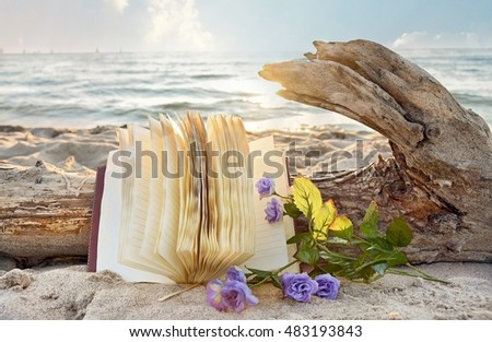 journal on driftwood log with purple roses in beach sand