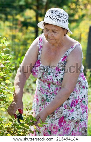 Joyful Caucasian senior woman gardening - stock photo