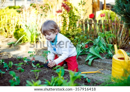 Joyful preschool blond kid boy planting seeds and seedlings of tomatoes in vegetable garden. Happy carefree childhood. Funny child having fun with gardening in spring.