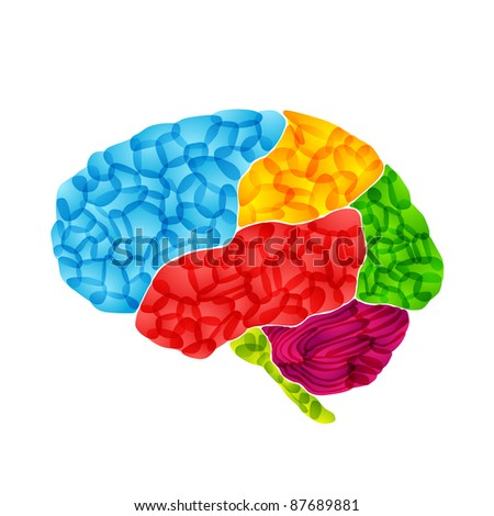 jpg, human brain, abstract background - stock photo