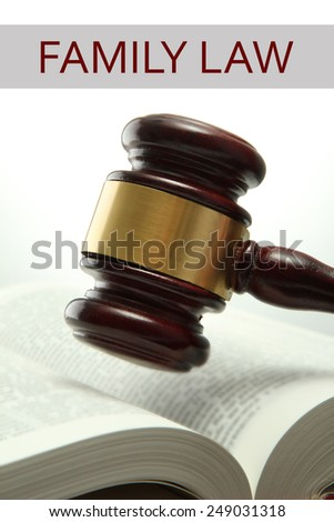 Judge's gavel on book and Family LAW text isolated on white - stock photo