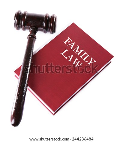 Judge's gavel on Family LAW book isolated on white - stock photo
