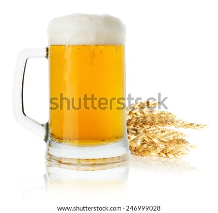 jug of beer with wheat isolated on the white background - stock photo