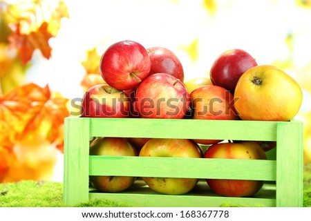 Juicy apples in wooden box on grass on natural background  - stock photo