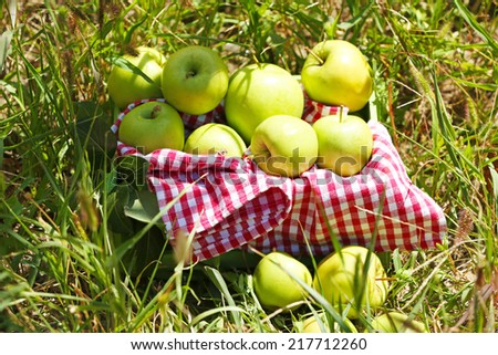 Juicy apples in wooden box on grass, outdoors