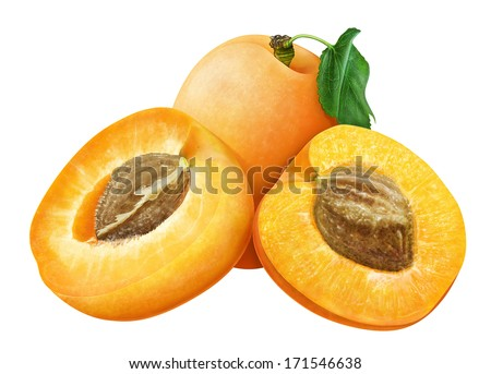 juicy apricot with leaf on white background  - stock photo