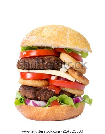 Juicy beef burger isolated on white background  - stock photo