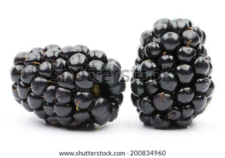 Juicy blackberries isolated on white background  - stock photo