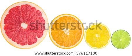 juicy citrus - stock photo