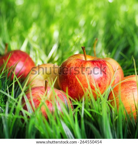 Juicy fresh red apples on green grass. Healthy eco food rich in minerals and vitamins. Product of organic farming. - stock photo