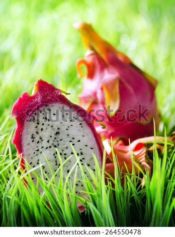 Juicy fresh ripe dragon fruit or pitaya on green grass in the morning. Healthy eco food rich in minerals and vitamins. Product of organic farming. - stock photo