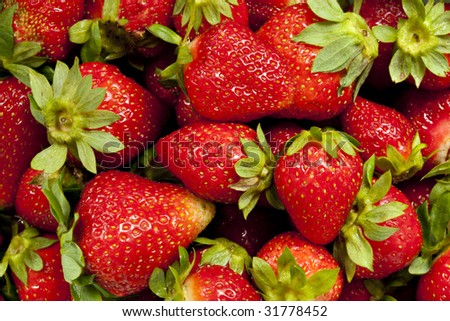 Juicy Red Strawberries Fresh From The Farm