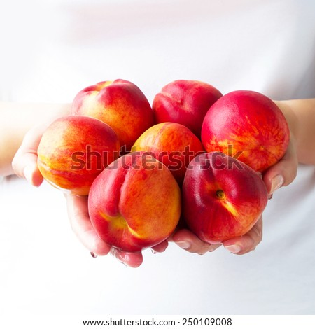Juicy, ripe peaches in the hands   - stock photo