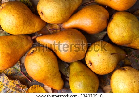 Juicy ripe pears with dried leaves on wooden table - stock photo