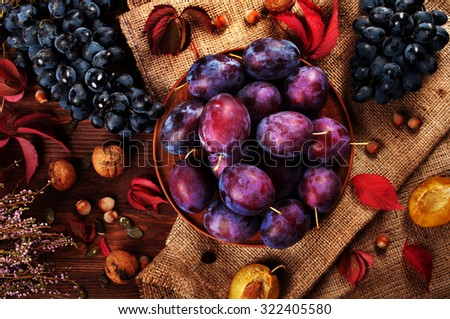 Juicy ripe plums on a wooden dark background; plum on sackcloth; autumn still life; nuts and plums; walnuts; hazelnuts; plums; detoxification; raw food; plum diet; harvest from the garden;  - stock photo