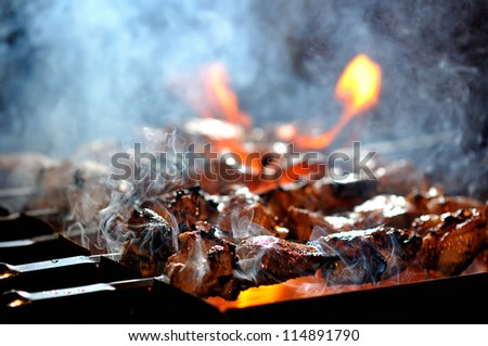 Juicy slices of meat prepare on fire - stock photo