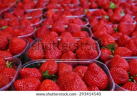 Juicy sweet red strawberries at the farmers market