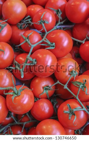 Juicy tomatoes - stock photo