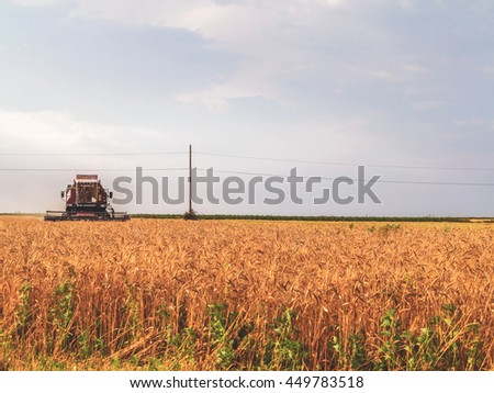 July 9, 2016. Odessa region, Ukraine. Ukrainian farmers are reaping the wheat harvest in the fields near Odessa.