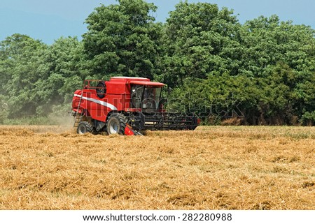 July, 02 2013 -Trezzo d' Adda, Lombardy, Italy : An agricultural thresher or combine harvester working in a recently cut wheat field harvesting the wheat