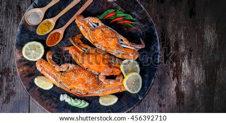 jumbo crab and spices herb on dark background and space with text - stock photo
