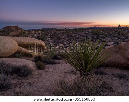 Jumbo Rocks in Joshua Tree National Park, California, USA, where the Mojave and Colorado desert ecosystems meet. - stock photo
