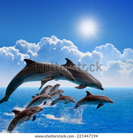Jumping dolphins, blue sea and sky, white clouds, bright sun - stock photo