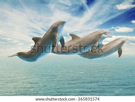 jumping dolphins, seascape with deep  ocean  waters and cloudscape - stock photo