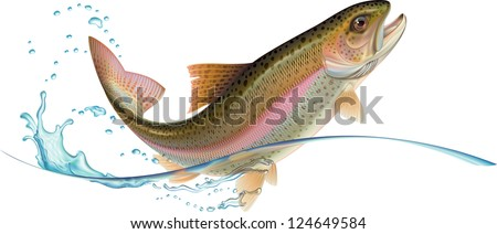 Jumping trout with water splash. Raster. Check my portfolio for a vector version. - stock photo