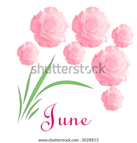 june wedding announcement abstract pink  flower bouquet on white