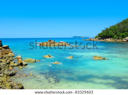 Jungle Bay Summertime - stock photo