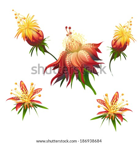 Jungle flowers - stock photo