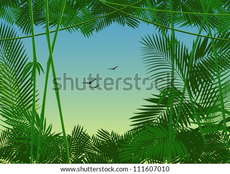 jungle forest. raster version - stock photo
