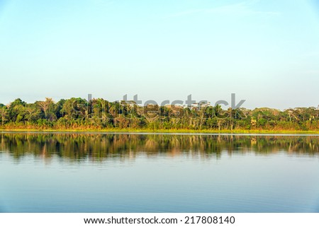 Jungle reflected in a lake in Madidi National Park in the Amazon rainforest near Rurrenabaque, Bolivia - stock photo