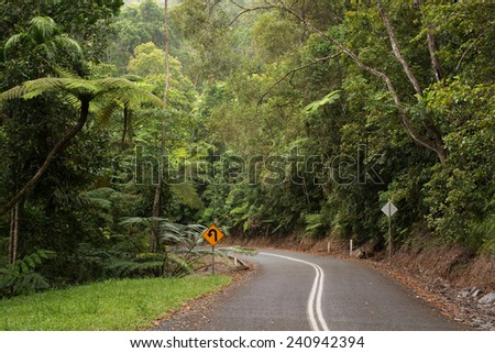 Jungle Travel Background - stock photo
