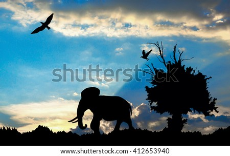 Jungle with old tree, birds and elephant on blue cloudy sunset background - stock photo