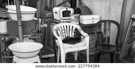Junk kitchenware and cat, as hostess, sitting on chair at the flea market  in Jaffa (Israel).  Homelessness concept. Aged photo. Black and white.