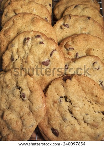 Just baked chocolate chip cookies cooling on a wire rack. - stock photo